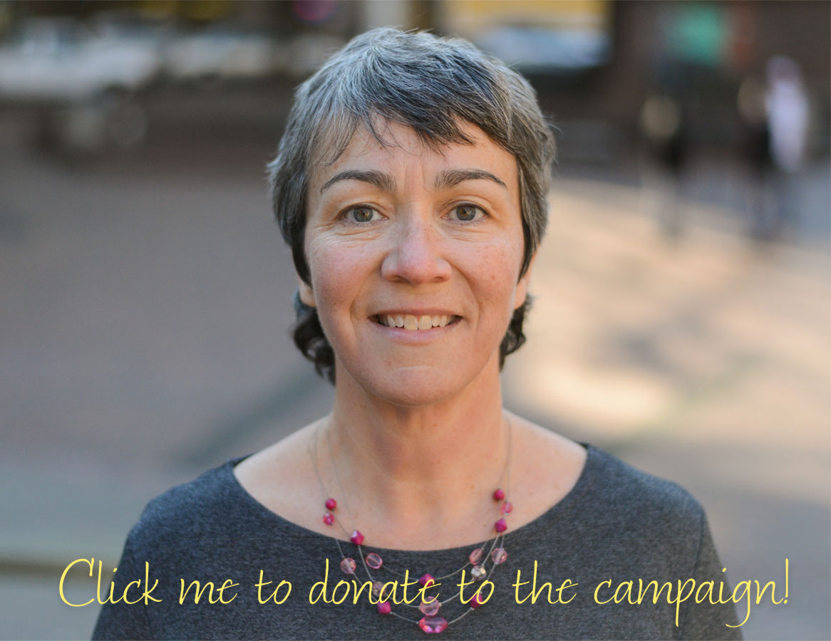 Click to donate to the campaign